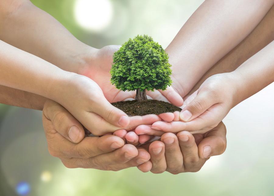 ekologiczny hotel w poznaniu